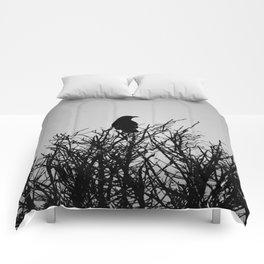 Black Watch Comforters