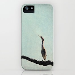 Minimalist Vintage Inspired Green Heron on Pale Blue Sky iPhone Case