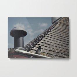 bird on a roof Metal Print