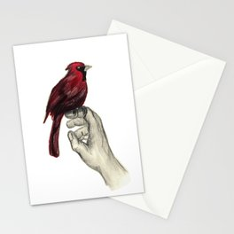 Cardinal Focus Stationery Cards