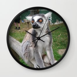 Laid Back Lemur Wall Clock