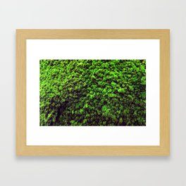 Dark Green Moss Framed Art Print