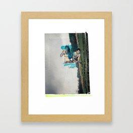 Domestication Of Fair Framed Art Print