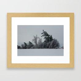 2013 Ice Storm 1 Framed Art Print