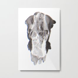 Tritone F Metal Print