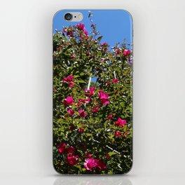 Summel close up tree flowers iPhone Skin