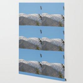 Southern California Snow Tease Wallpaper