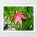 Leaf Zen by creativebreath