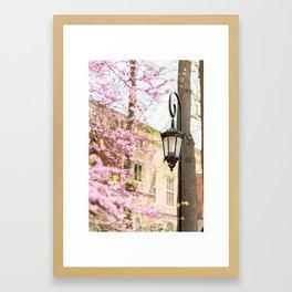 Purple Lampost Blooms Framed Art Print