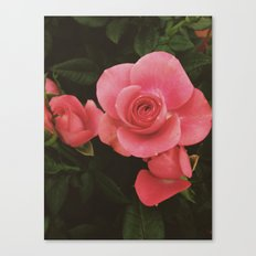 Faded Love Canvas Print