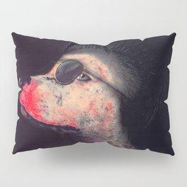 Street Dog Pillow Sham