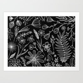 Floral Pattern II Black and White Art Print