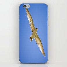Eyes in the Sky iPhone & iPod Skin