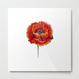 Big red poppies Metal Print