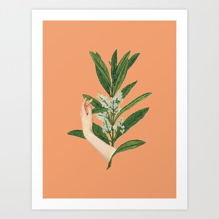 Self-love: Bloom Kunstdrucke