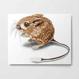 Kangaroo Rat Metal Print