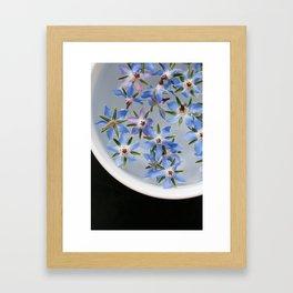 Borage Flowers Framed Art Print