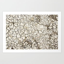 Minimalist photo of a creek bed in Big Bend National Park Art Print