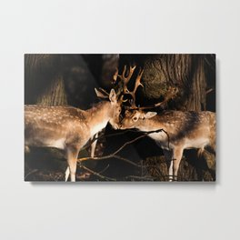 Deer Love Metal Print