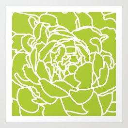 peony green Art Print