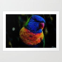 Colorful elegant Parrot Art Print