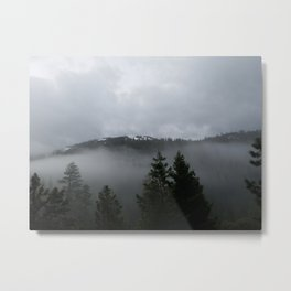 As the Earth Unveils the Forest Metal Print