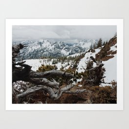 Wenatchee National Forest Art Print