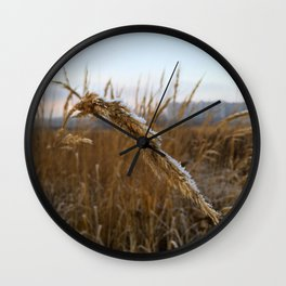 Frozen field. Wall Clock