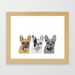 Triple Frenchies Framed Art Print