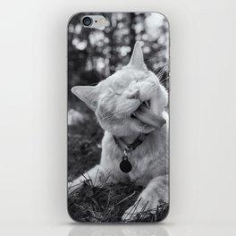 Cheeto the Cat iPhone Skin