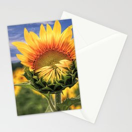 Blooming Sunflower with Sky - Textured Stationery Cards