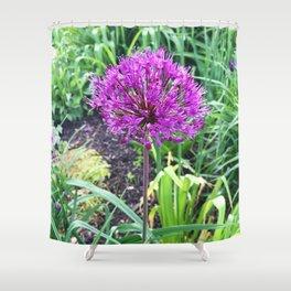 466 Allium FLower Shower Curtain
