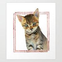 European Shorthair Kitten Painting with Faux Rose Gold Frame Art Print