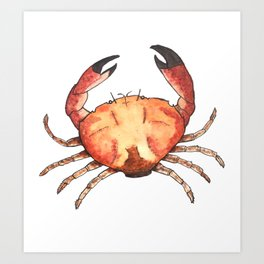 Crab: Fish of Portugal Art Print
