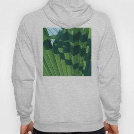 Fine Art Fan Palm Leaf In Accordion Design Hoody