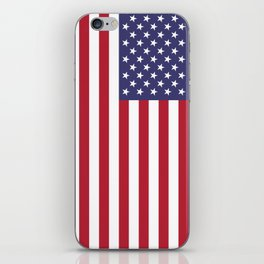 USA National Flag Authentic Scale G-spec 10:19 iPhone Skin