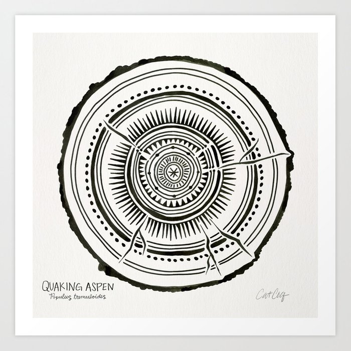 Quaking Aspen Black Tree Rings Art Print By Catcoq Society6