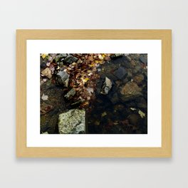 Autumn Colors in the Water Framed Art Print