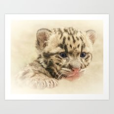 CUTE CLOUDED LEOPARD CUB Art Print