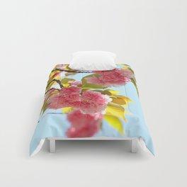 SAKURA Comforters
