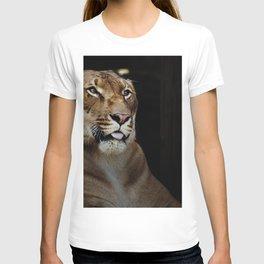 Hercules the liger half lion half tiger T-shirt