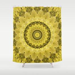 Mandala Protection Shower Curtain