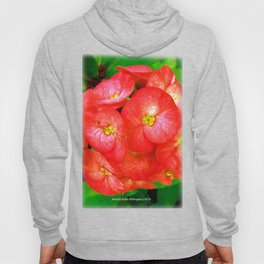 Red and Yellow Heart Flowers by Jeronimo Rubio Photography 2016 Hoody