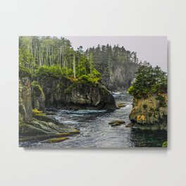 Cape Flattery, Olympic Peninsula, Washington Metal Print