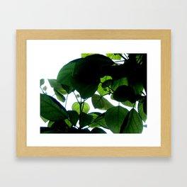 Greenery Abstract Framed Art Print