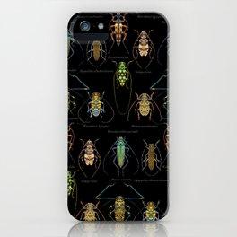 Cerambycidae iPhone Case