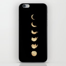 Cat Landscape 57: Phases of the Meow iPhone Skin