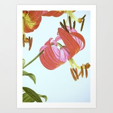 I. Vintage Flowers Botanical Print by Pierre-Joseph Redouté - Lilies Art Print