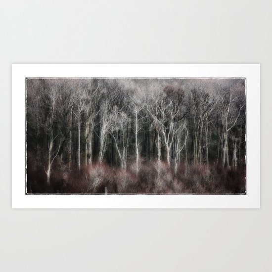 Ohio Trees Art Print