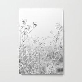 Suho cvijeće Metal Print